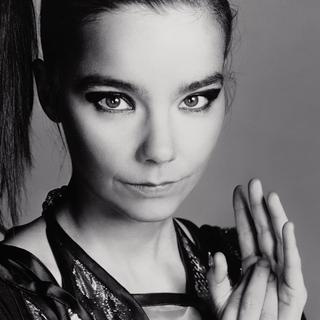 Björk concert in London