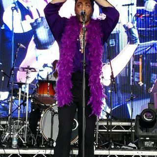 Endorphinmachine (Prince Tribute) concert in London