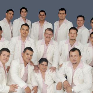 Concierto de La Arrolladora Banda El Limon en Hidalgo