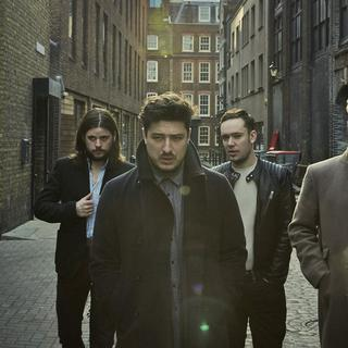 Concierto de Mumford & Sons + Local Natives en Chicago