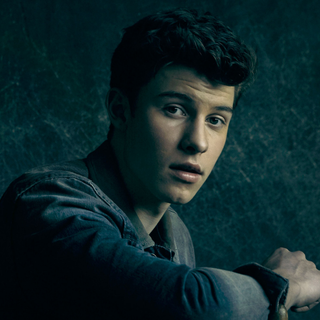 Concierto de Shawn Mendes en Houston