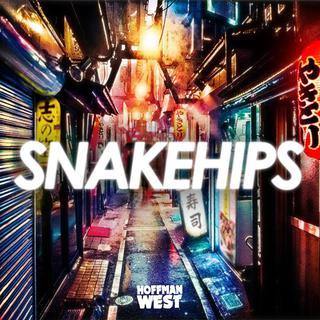 Concierto de Snakehips en Englewood
