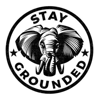 Concierto de Stay Grounded en Tacoma