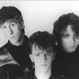 The Icicle Works concert in Birmingham