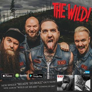 Concierto de The Wild en Londres