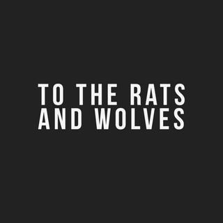 Concierto de To The Rats and Wolves en Frankfurt del Meno