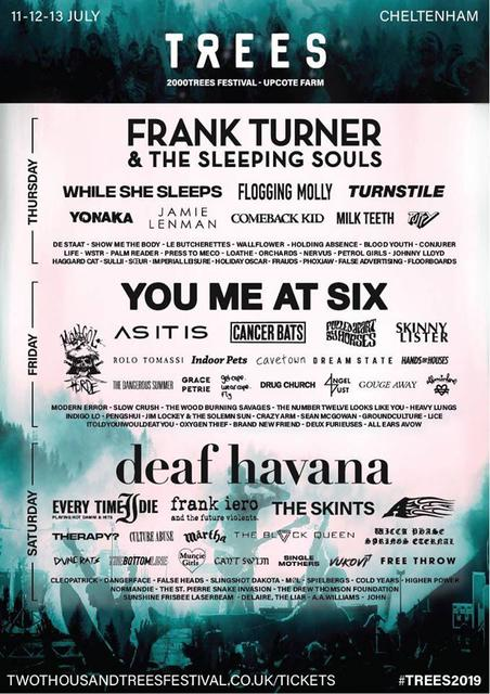 2000Trees Festival picture