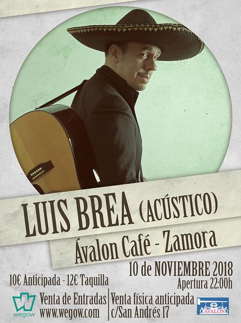 Luis Brea en Zamora