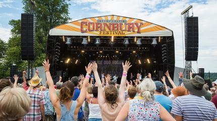 Cornbury Music Festival Picture