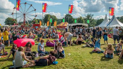 Electric Fields Picture