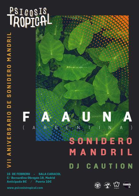 Concierto de Faauna en Madrid