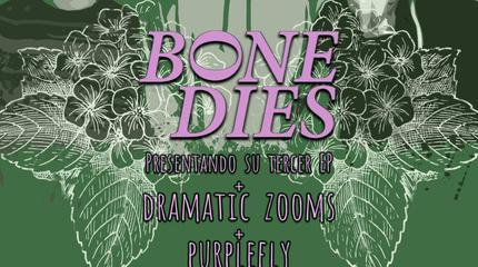 Bone Dies + Dramatic Zooms concert in Madrid