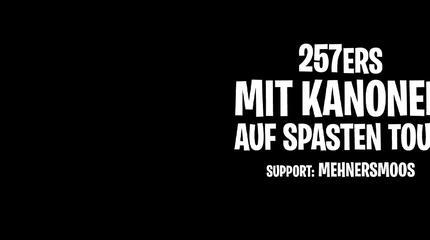 Concierto de 257ers en Stuttgart