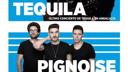 Concierto de Tequila y Pignoise en Sevilla