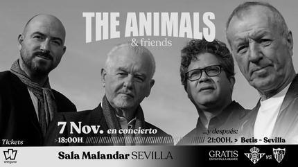 The ANIMALS en Sevilla