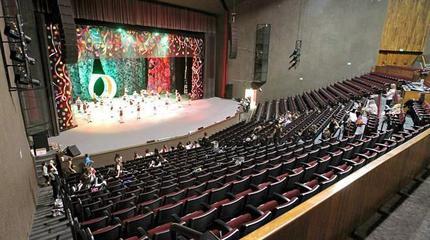 Foto del interior del auditorio Luis Edizondo