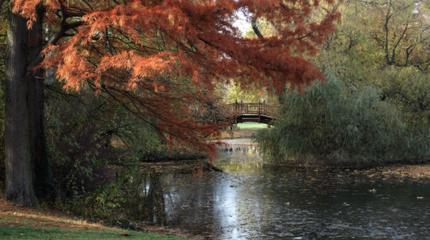 Clara Zetkin Park photos
