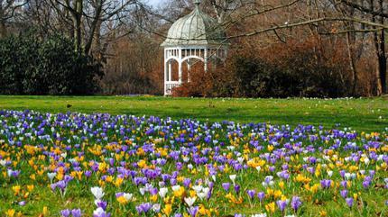 Clara Zetkin Park events