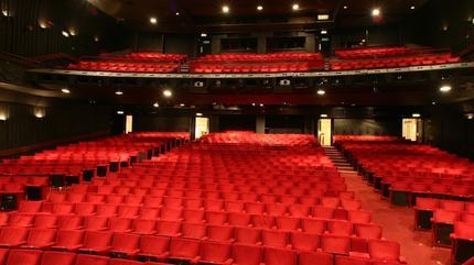 Peacock Theatre Picture