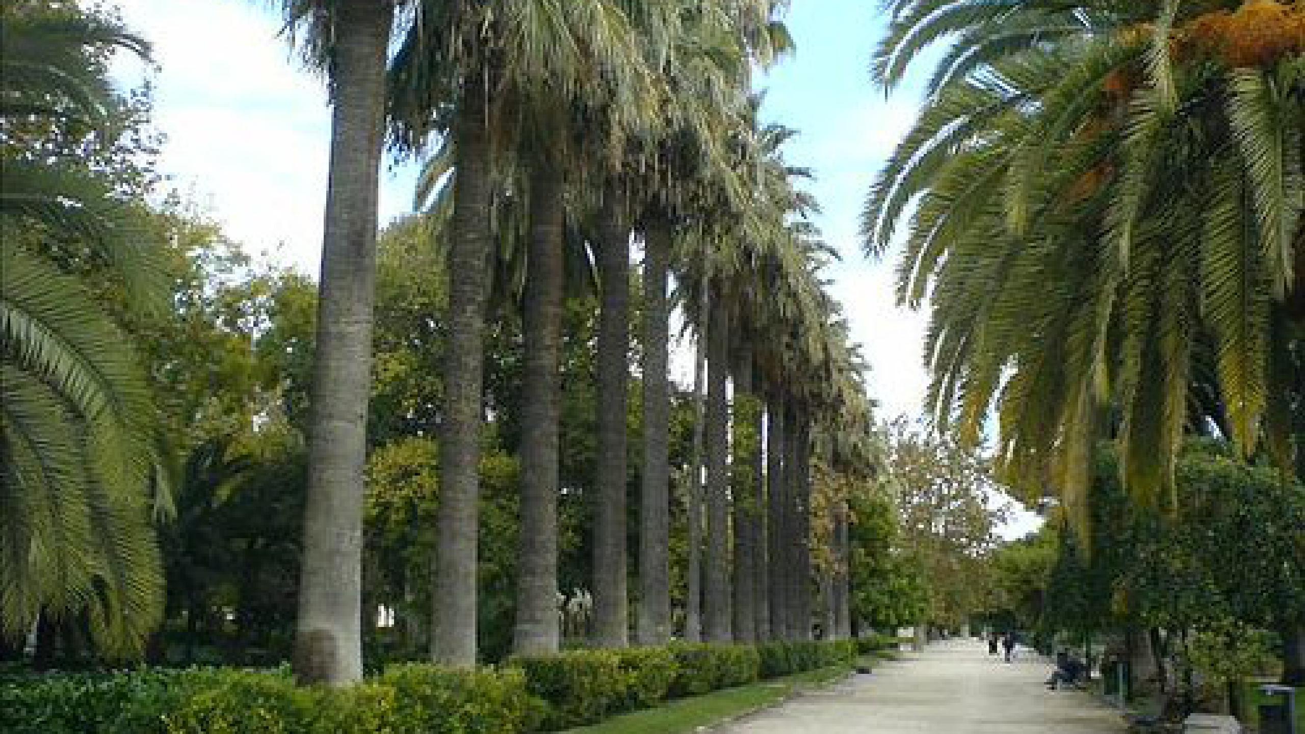jardines de viveros valencia entradas y conciertos 2017