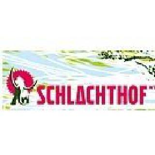 Concierto de Young Chinese Dogs en Wiesbaden